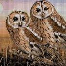Owls 2 DMC cross stitch pattern in pdf DMC