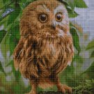 Little owl DMC cross stitch pattern in pdf DMC