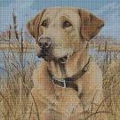 Dog in grass DMC cross stitch pattern in pdf DMC