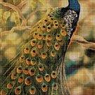 Beautiful Peacock DMC cross stitch pattern in pdf DMC