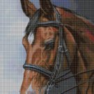 Horse portrait DMC cross stitch pattern in pdf DMC