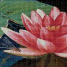 Water lily with dragonfly cross stitch pattern in pdf DMC