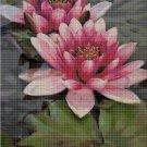 Water lily cross stitch pattern in pdf DMC