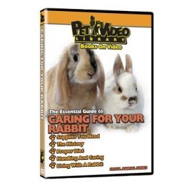 The Essential Guide to Caring For Your Rabbit Pet Dvd