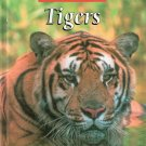 The Untamed World Tigers by E.Melanie Watt 0739849735