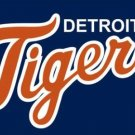 Detroit Tigers Baseball Club Orange-Blue Flag 3X5Ft Banner USA Polyester with Brass Grommets