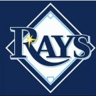 Tampa Bay Rays Blue flag 3X5Ft Banner USA Polyester with Brass Grommets