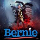 President Bernie Sanders 2020 Flag 3x5Ft President USA Banner New
