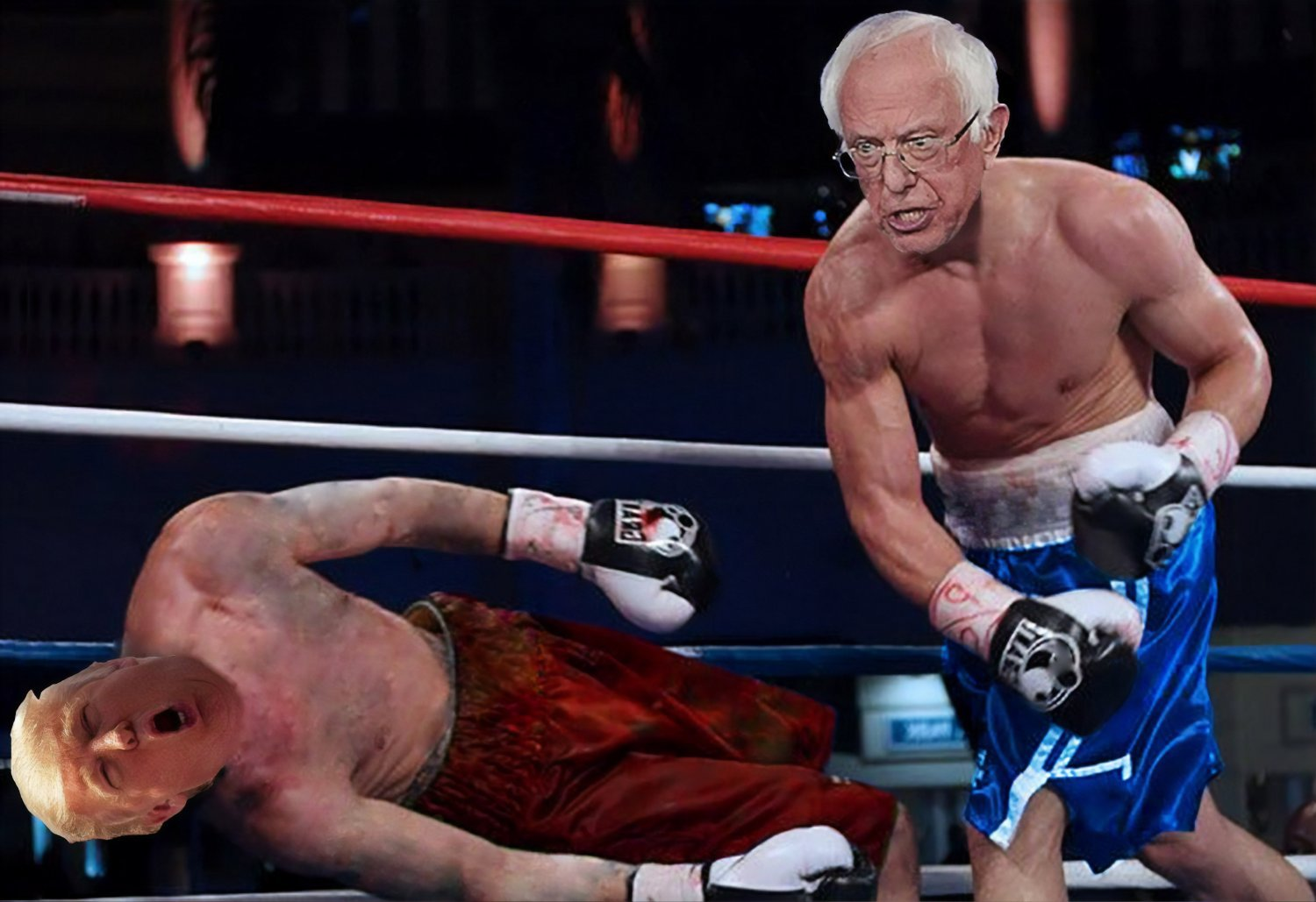 Bernie Sanders Flag 3x5 FT Fighting Knock Out Trump Flag