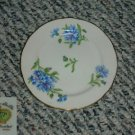Rossetti Meadow Belle 1 Bread and Butter Plate