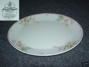 Royal Doulton Regents Park 1 Oval Serving Platter