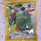 Japan Food's Food Cantaloupe Charm Zipper Pull Kawaii