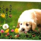 Hallmark Japan Cute Puppy Postcard (A) Kawaii