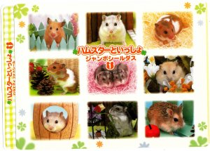 Bandai Japan Lovely Hamsters Jumbo Sealdass Booklet (A) 2000 Kawaii