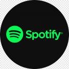1000 Spotify Plays / Playlist / or Album Plays