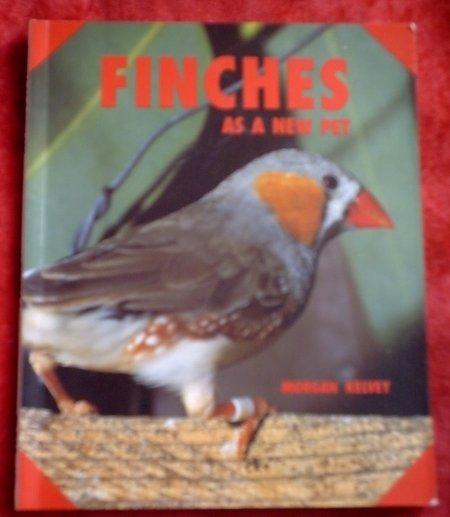 Finches*As a New Pet*Morgan Kevey*