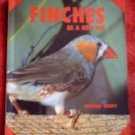 Finches*As a New Pet*Morgan Kevey*