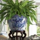 Chinese Porcelain Planter