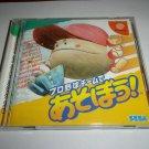 Pro Yakyuu Team de Asobou! - SEGA Enterprises 1999 - SEGA Dreamcast NTSC-J