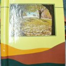 20 Page Fall leaves Trees Yellow Brown Orange Coil Style Photo Album 10 x 11 +