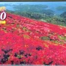 Red Flower Hillside Lakes Islands Puzzle 500