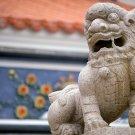 East Asian History - Tokugawa Japan