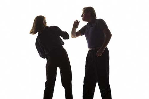 Human Sexuality - Sexual Assault-Harassment  & Partner Violence