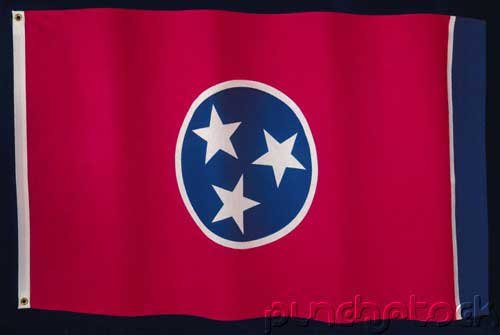 Tennessee State Constitution - For State-Federal Examinations