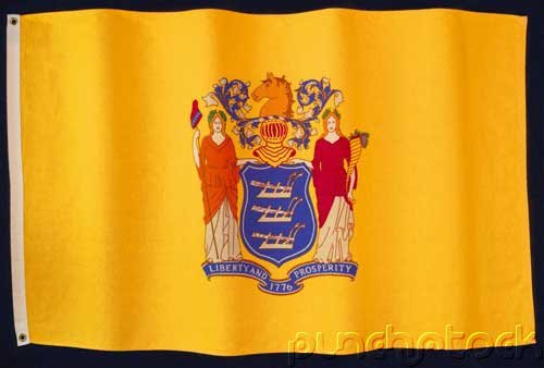 New Jersey State Constitution - For State & Federal Examinations