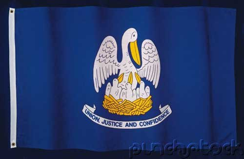 Louisiana State Constitution - For State & Federal Examinations
