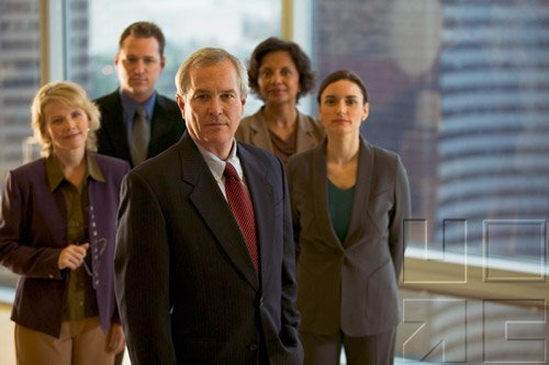 Diversity In Business & The Professions II
