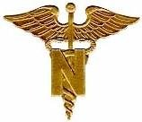 Fundamentals Of Nursing - Theories & Conceptual Frameworks
