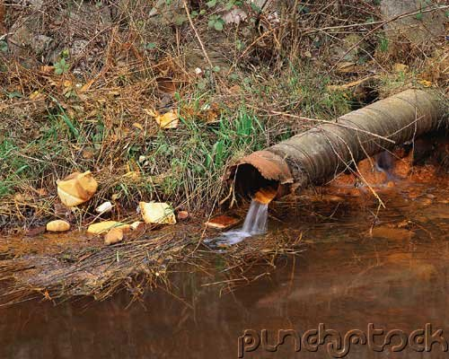 Environmental Management - Water Pollution