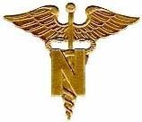 Nursing Management - Computer Information Systems