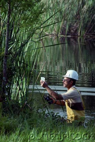 Environmental Issues - Taking Sides - Philosophy & Politics III