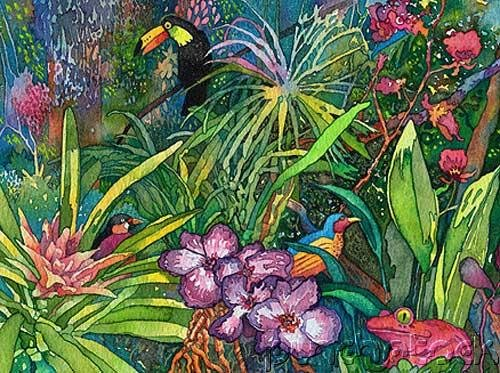 Jungles - An Exploration Of The Most Mysterious Of All Natural Worlds - The Birds Of The Jungle