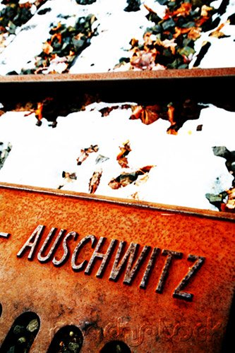 The History Of The Holocaust - Resistance