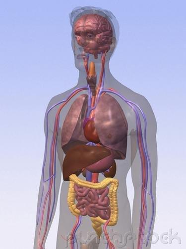 Assessment & Management Of Clinical Problems - Inflammatory & Valvular Heart Disease