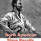 The Story Of Denmark Vesey - Slave Revolt Leader