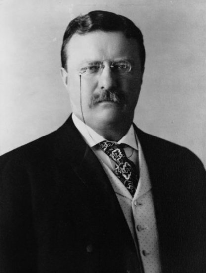 The Story Of Theodore Roosevelt - United States President