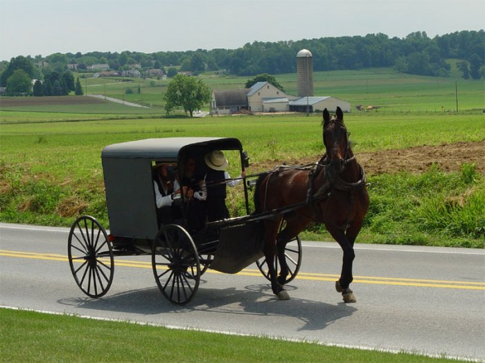 The History Of The Amish