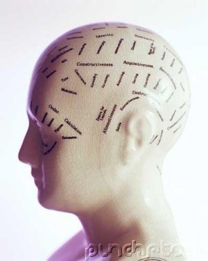Memory & Cognition - Concept Formation & Problem Solving