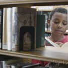 African American History - In Literature