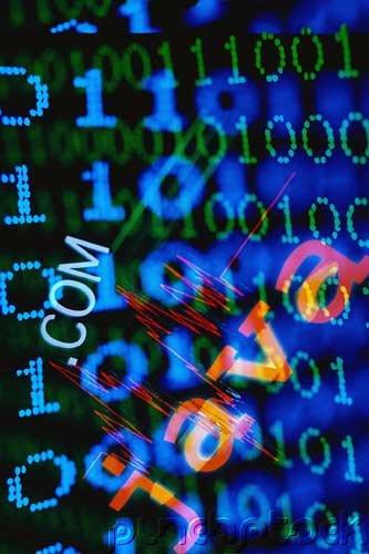 Managing Database Environments - Object Database Management Systems