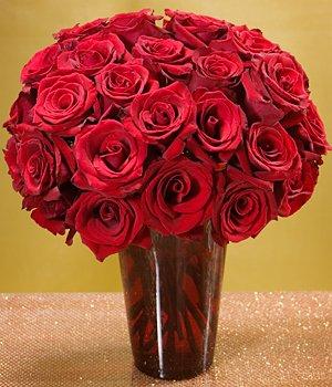 Three Dozen Roses in Red Ruby Vase