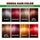 Botanica Henna Hair Color / Dye With Free Hair Brush, Gloves & Shower Cap 100 gm
