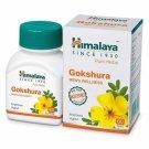 Himalaya Guduchi Immunity Wellness Tablets - 60 Tablets
