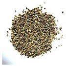 Kapebonavista Palak Beej Desi 50 Seed Indian Spinach Raw Herbs 1 no.s Pack Of 1