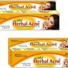 Herbal Acne Healing Touch Form Ayurveda Acne SKIN Cream  (60 g)