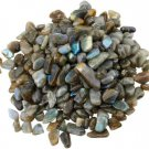 Shubhanjali Labradorite Chips Stone for Vastu Small Grey 100 GM